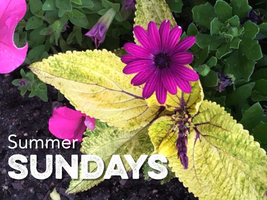 Summer Sunday worship at 9 am and 11 am