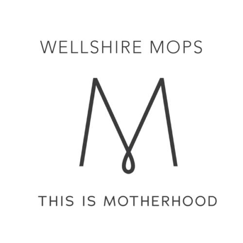 Wellshire MOPS Begins Sept. 9